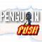 Penguin Push